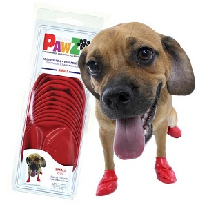 Best Dog Water Shoe