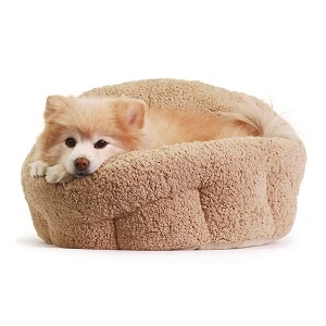 Best Dog Bed for Older Dogs