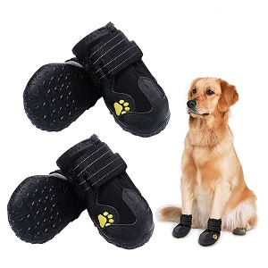 PK.ZTopia Waterproof Shoes For Dogs
