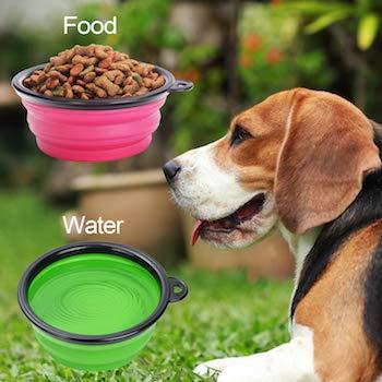 Pet Bonus Collapsible Dog Bowl