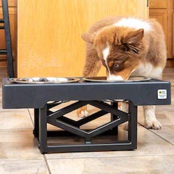 Pet Zone Designer Elevated Bowls For Dogs