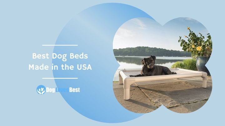 Best Dog Beds Made in the USA Featured Image