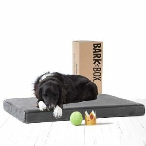 BarkBox Memory Foam Dog Bed