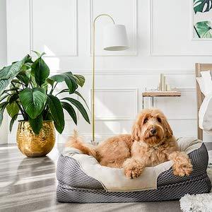 Barks Bar Gray Orthopedic Dog Bed