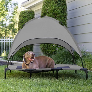 Best Choice Products Raised Mesh Dog Bed