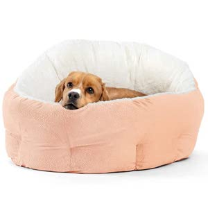 Best Dog Beds For Older Dogs