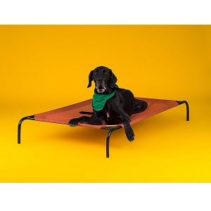 Best Dog Beds For Pet Dogs