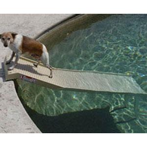 Best Dog Pool Ramp