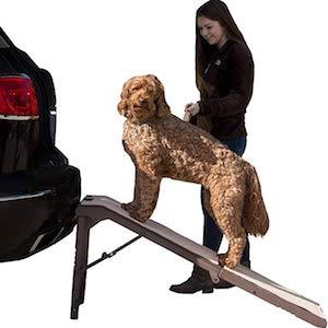 Best Dog Ramp For Large Dog Breeds