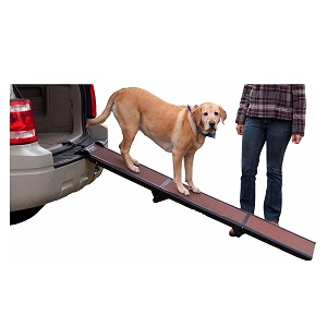 Best Dog Ramp For SUVs And Cars
