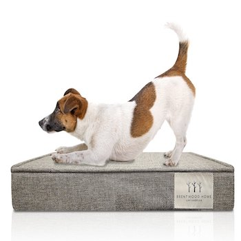 Brentwood Home Orthopedic Pet Bed Made in USA