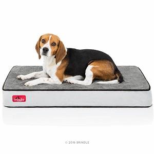 Brindle Waterproof Designer Memory Foam Cheap Dog Bed