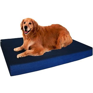 Dogbed4less Premium Memory Foam Washable Dog Bed