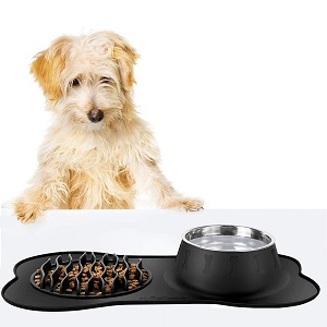 FLYINGCOLORS Pet Bowls Stainless Steel Dog Bowl