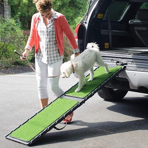 Gen7Pets Natural Step Ramp for Dogs
