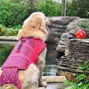 HAOCOO Dog Life Vest Saver Safety Swimsuit