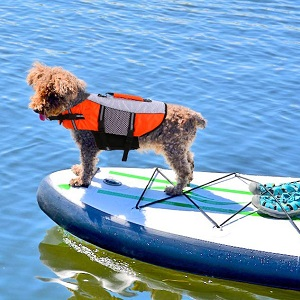 IDOMIK Dog Life Vest Jacket for Swimming kayaking