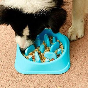 JASGOOD Dog Feeder Slow Eating Pet Bowl