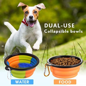 Lesotc Collapsible Silicone Dog Bowl