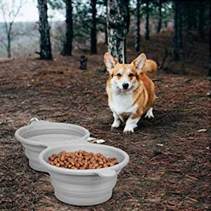 LumoLeaf Collapsible Bowls for Dogs