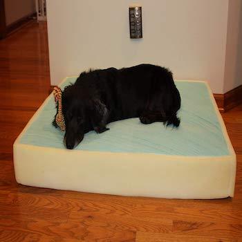 Memory Foam Dog Bed Mattress Made in USA