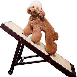 Merry Products Collapsible Dog Ramp