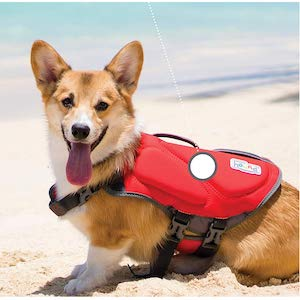 Outward Hound Dawson Dog Life Vest