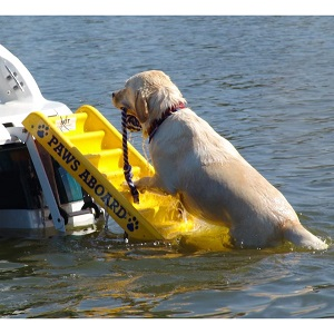 Paws Aboard Doggy Boat Ladder and Ramp