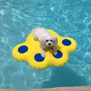 Paws Aboard Doggy Lazy Raft