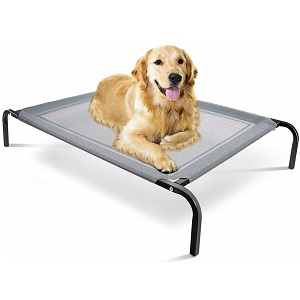 Paws & Pals Elevated Bed for Dogs