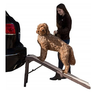 Pet Gear Free-Standing Ramp for Pet's
