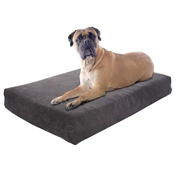 Pet Support Systems Orthopedic Dog Beds Made in the USA