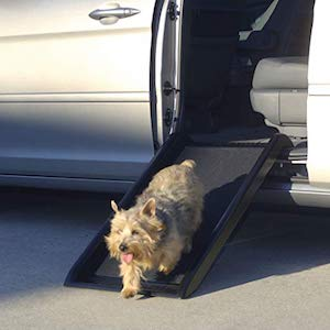 PetSafe Happy Ride Mini Dog Ramp