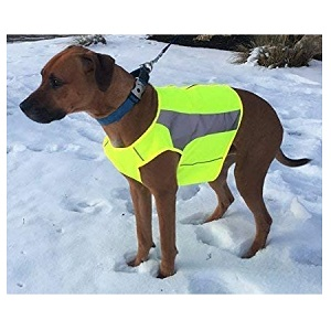 See Spot Zip EV Sport High Visibility Reflective Dog Safety Vest