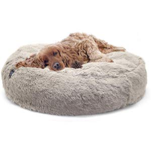 SportPet Designs Luxury Sofa Lounge Pet Bed