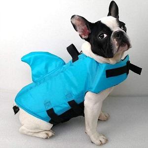 SwimWays Sea Squirts Dog Life Jacket