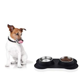 URPOWER No Spill Stainless Steel Dog Bowl