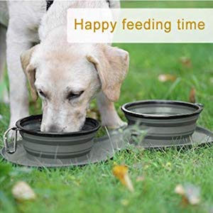 WINSEE Large Collapsible BPA Free Dog Bowl